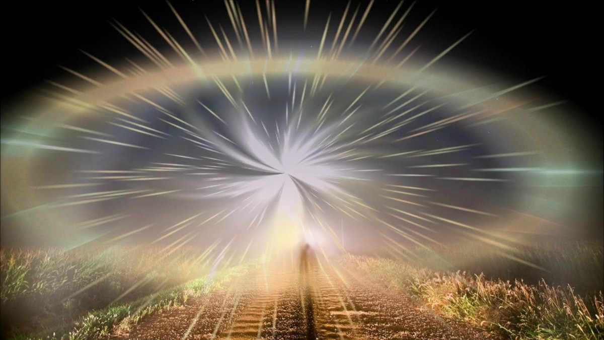 ветка свет в нашей жизни картинки полна эклектики, сочетает